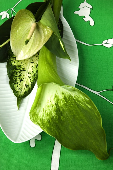 green fleurs feuilles